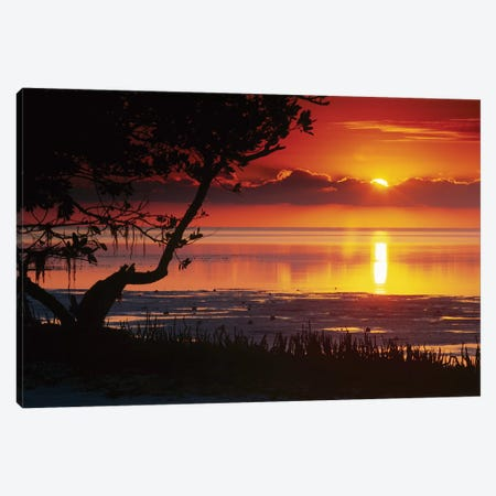 Sunset Over Anne's Beach, Florida Canvas Print #TFI1058} by Tim Fitzharris Canvas Art
