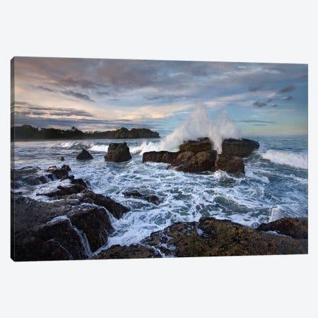 Surf Hitting Rocky Coastline, Pelada Beach, Costa Rica Canvas Print #TFI1069} by Tim Fitzharris Canvas Art Print