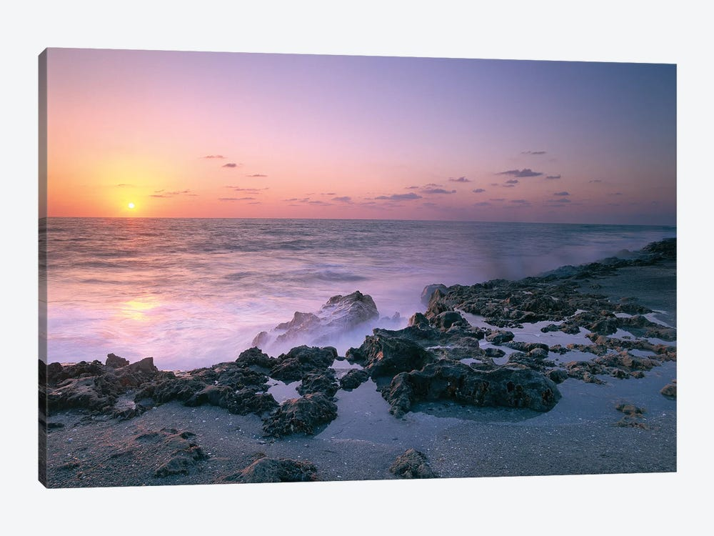 Blowing Rocks Preserve At Sunset, Jupiter Island, Eastern Florida by Tim Fitzharris 1-piece Art Print