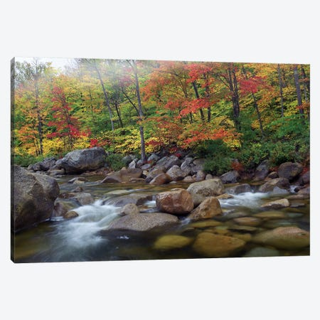 Swift River Flowing Through Fall Colored Forest, White Mountains National Forest, New Hampshire Canvas Print #TFI1071} by Tim Fitzharris Canvas Wall Art