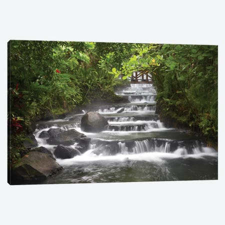 Tabacon River, Cascades And Pools In The Rainforest, Costa Rica Canvas Print #TFI1075} by Tim Fitzharris Art Print