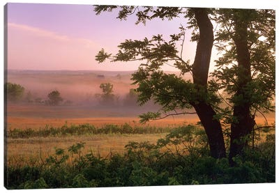 Tallgrass Prairie National Preserve, Kansas Canvas Art Print