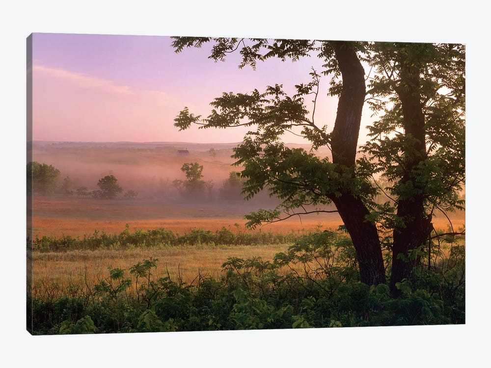 Tallgrass Prairie National Preserve, Kansas by Tim Fitzharris 1-piece Canvas Artwork