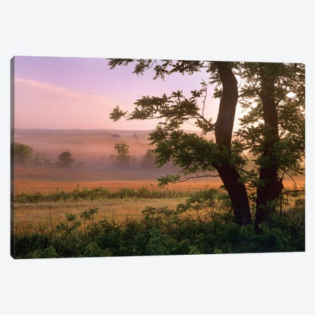 Tallgrass Prairie National Preserve, Kansas Canvas Print #TFI1076} by Tim Fitzharris Canvas Art Print