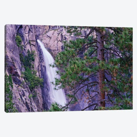The Cascades From Yosemite National Park, California Canvas Print #TFI1084} by Tim Fitzharris Canvas Art
