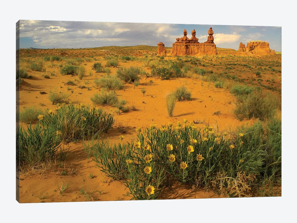 The Three Judges, Goblin Valley State Park, Utah by Tim Fitzharris 1-piece Canvas Art