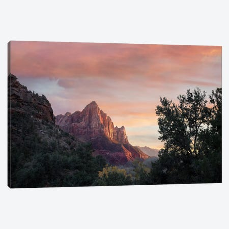 The Watchman, Zion National Park, Utah Canvas Print #TFI1089} by Tim Fitzharris Art Print