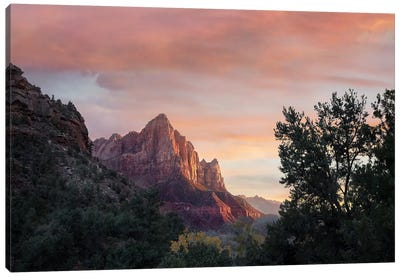 The Watchman, Zion National Park, Utah Canvas Art Print