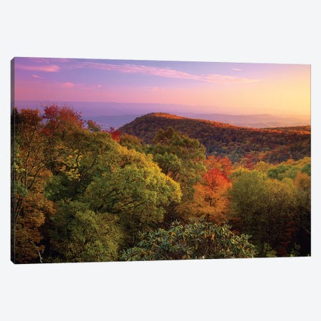 Blue Ridge Mountains With Deciduous Forests In Autumn, North Carolina Canvas Print #TFI108} by Tim Fitzharris Canvas Art Print