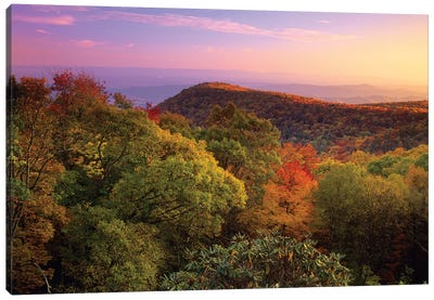 Blue Ridge Mountains With Deciduous Forests In Autumn, North Carolina Canvas Art Print