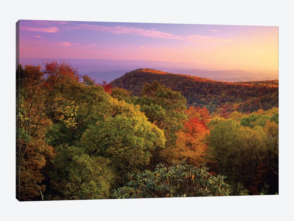 Blue Ridge Mountains With Deciduous Forests In Autumn, North Carolina by Tim Fitzharris 1-piece Art Print