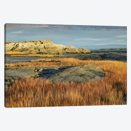 Tidal Marsh, Riviere-Trois-Pistoles, Quebec, Canada Canvas Print #TFI1090} by Tim Fitzharris Canvas Artwork