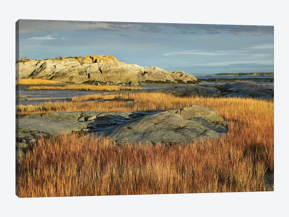 Tidal Marsh, Riviere-Trois-Pistoles, Quebec, Canada by Tim Fitzharris 1-piece Canvas Artwork