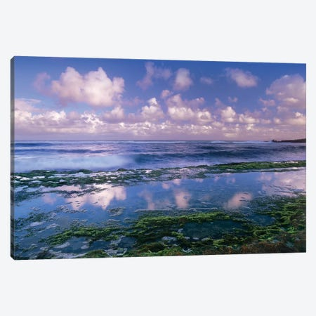 Tidepools And Waves At Ho'Okipa Beach, Maui, Hawaii Canvas Print #TFI1092} by Tim Fitzharris Canvas Wall Art