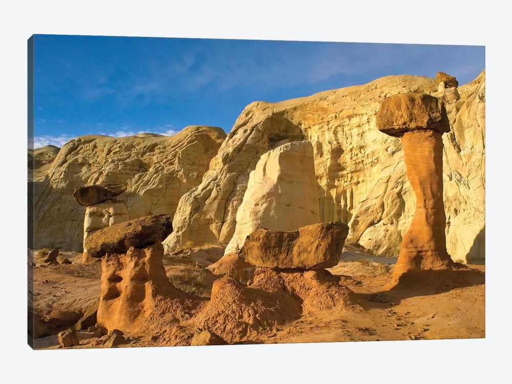 Toadstool Caprocks, Grand Staircase, Escalante National Monument, Utah by Tim Fitzharris 1-piece Art Print