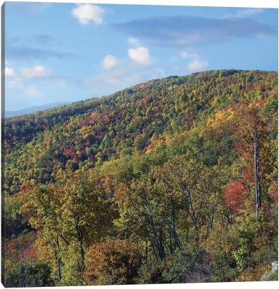 Blue Ridge Range From Moormans River Overlook, Shenandoah National Park, Virginia Canvas Art Print