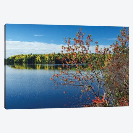 Tobique River, New Brunswick, Canada Canvas Print #TFI1100} by Tim Fitzharris Canvas Art