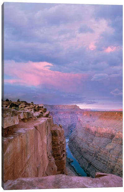 Toroweap Overlook, Grand Canyon National Park, Arizona Canvas Art Print