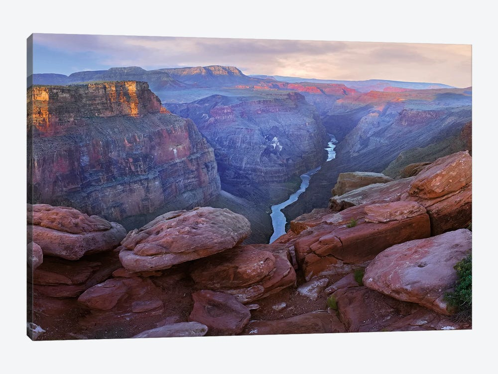 Toroweep Overlook View Of The Colorado River, Grand Canyon National Park, Arizona by Tim Fitzharris 1-piece Canvas Artwork