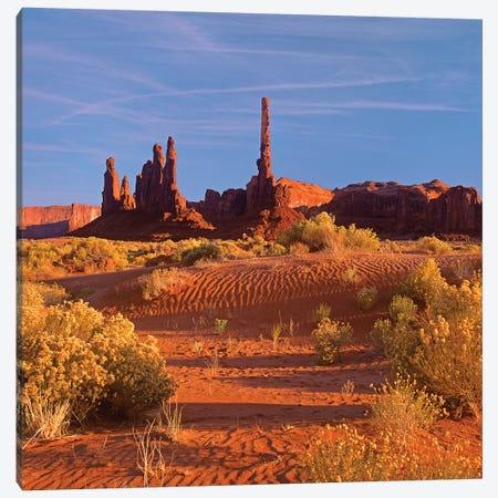Totem Pole And Yei Bi Chei With Sand Dunes And Shrubs, Monument Valley, Arizona And Utah Border Canvas Print #TFI1103} by Tim Fitzharris Canvas Wall Art