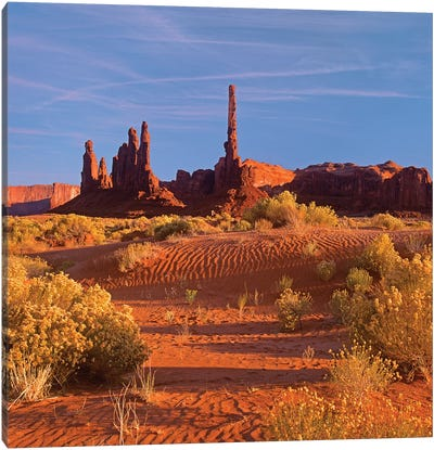 Totem Pole And Yei Bi Chei With Sand Dunes And Shrubs, Monument Valley, Arizona And Utah Border Canvas Art Print