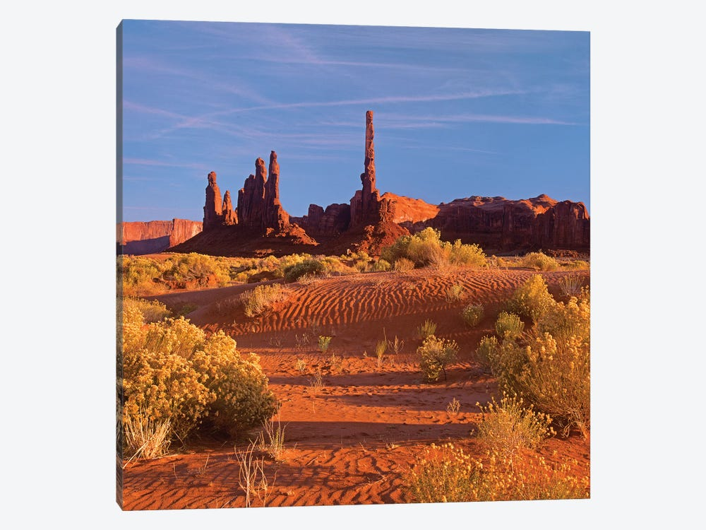 Totem Pole And Yei Bi Chei With Sand Dunes And Shrubs, Monument Valley, Arizona And Utah Border by Tim Fitzharris 1-piece Art Print
