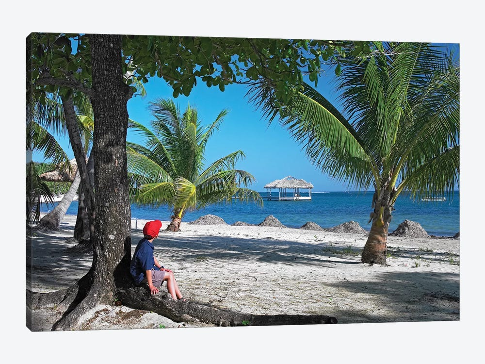 Tourist Resting Under Palm Trees On Beach At Palmetto Bay, Roatan Island, Honduras by Tim Fitzharris 1-piece Canvas Art