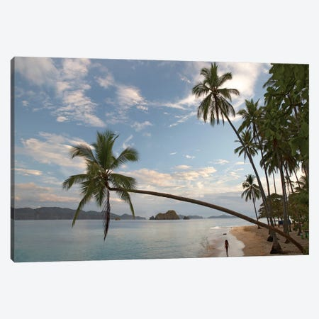 Tourist Walking Along Beach, Tortuga Island, Costa Rica Canvas Print #TFI1105} by Tim Fitzharris Canvas Print