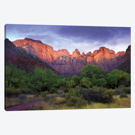 Towers Of The Virgin, Zion National Park, Utah Canvas Print #TFI1108} by Tim Fitzharris Canvas Artwork