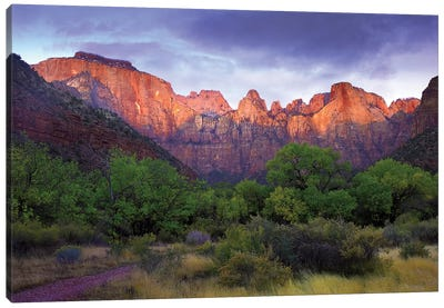 Towers Of The Virgin, Zion National Park, Utah Canvas Art Print