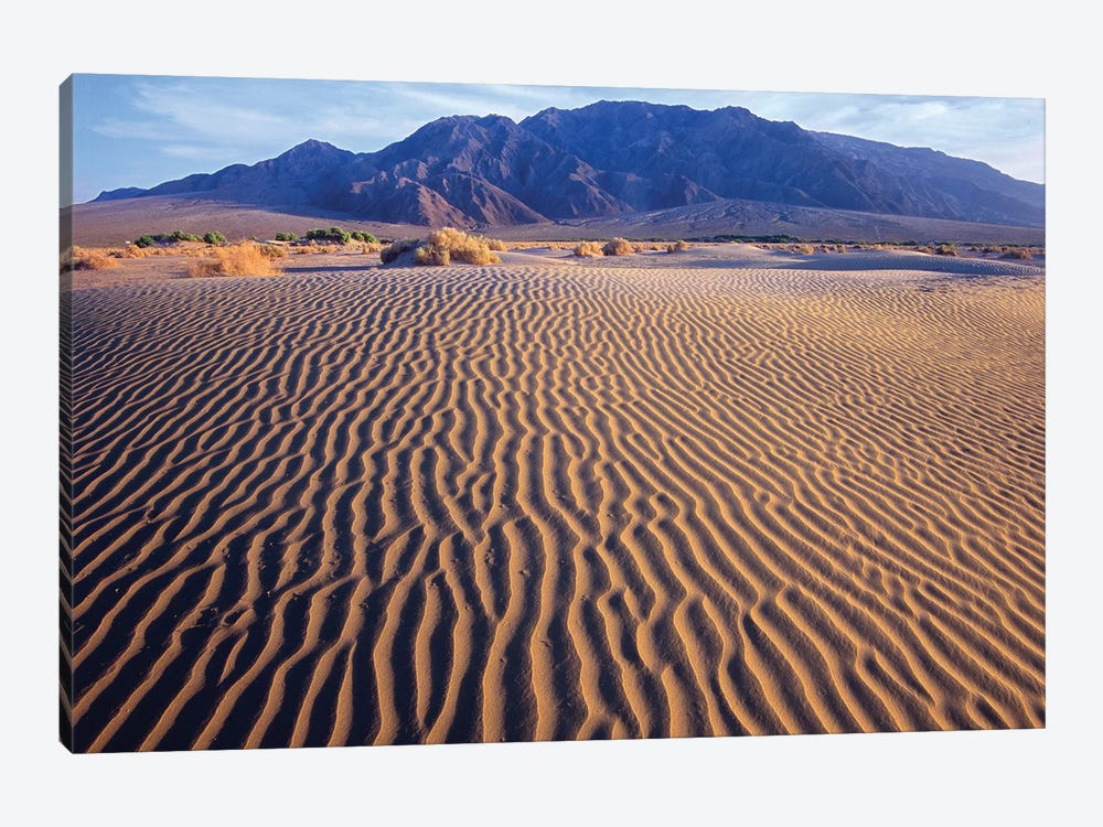 Tucki Mountain And Mesquite Flat Sand Dunes, Death Valley National Park, California by Tim Fitzharris 1-piece Canvas Art Print