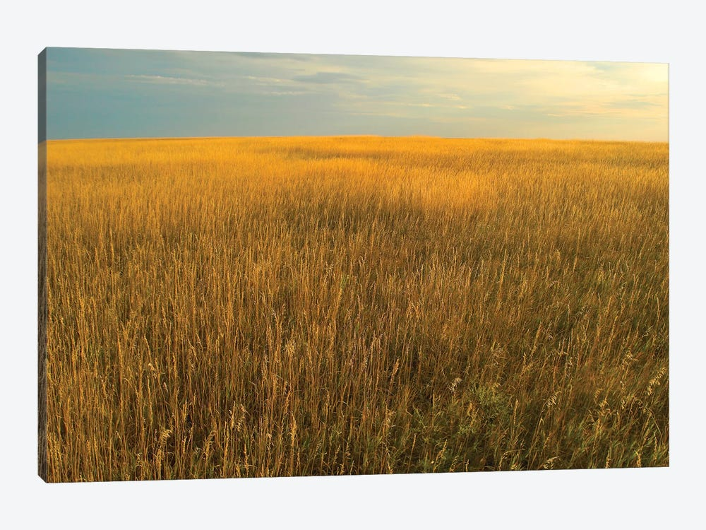 Upper Prairie In Badlands National Park, South Dakota by Tim Fitzharris 1-piece Canvas Artwork