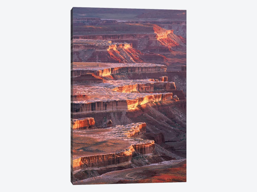 View From Grandview Point, Canyonlands National Park, Utah by Tim Fitzharris 1-piece Canvas Wall Art