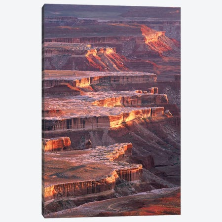 View From Grandview Point, Canyonlands National Park, Utah 3-Piece Canvas #TFI1119} by Tim Fitzharris Canvas Art Print