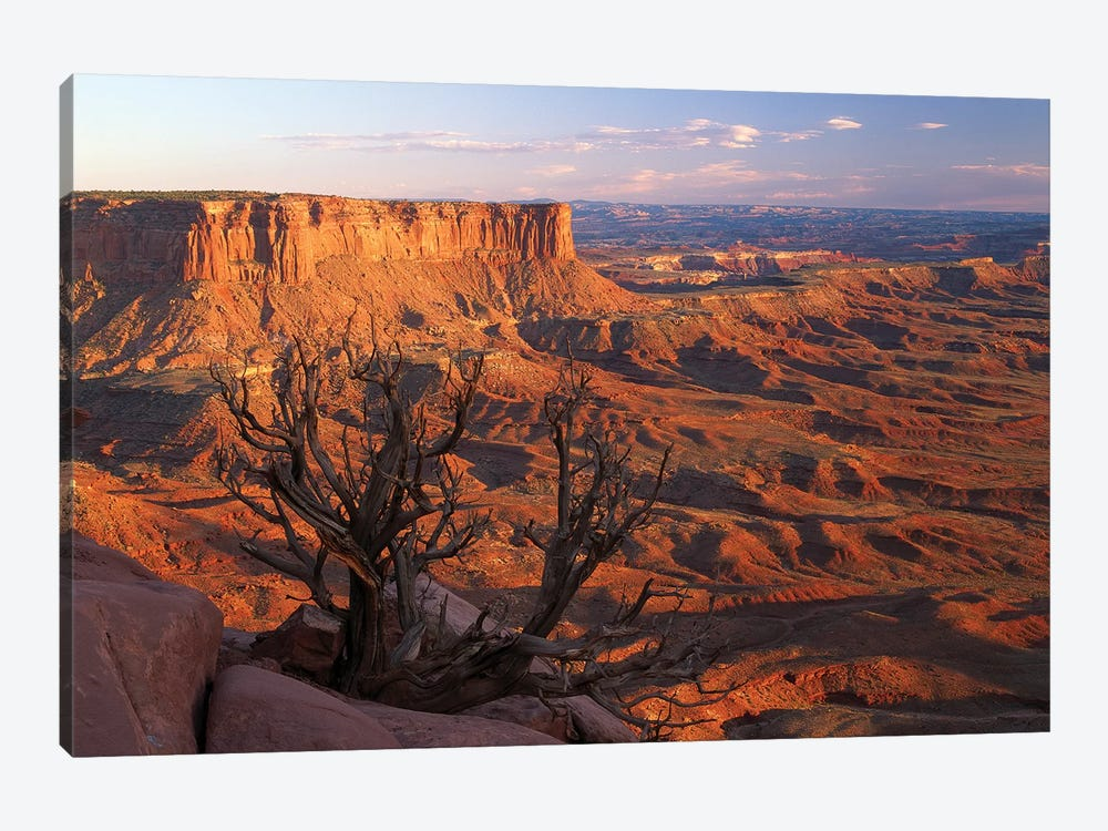 View From Green River Overlook, Canyonlands National Park, Utah I by Tim Fitzharris 1-piece Canvas Art