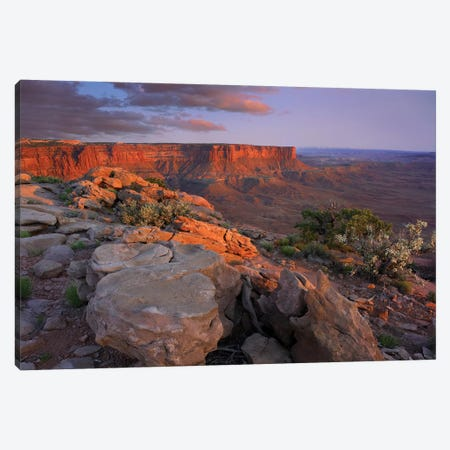 View From Green River Overlook, Canyonlands National Park, Utah II Canvas Print #TFI1121} by Tim Fitzharris Canvas Artwork