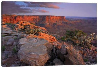View From Green River Overlook, Canyonlands National Park, Utah II Canvas Art Print