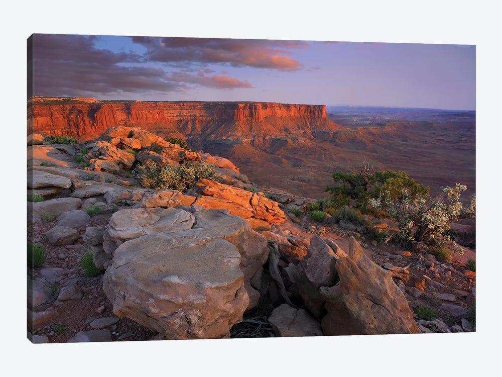 View From Green River Overlook, Canyonlands National Park, Utah II 1-piece Canvas Art Print
