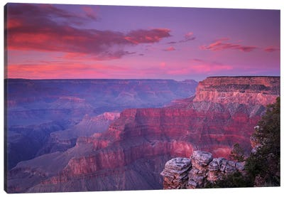 View Of The South Rim From Pima Point, Grand Canyon National Park, Arizona Canvas Art Print