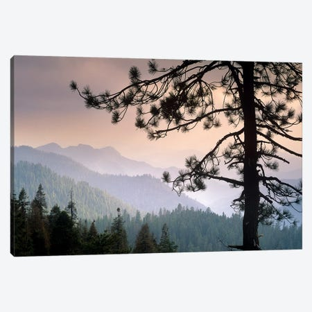View Over Foothills To The West From Kings Canyon National Park, California Canvas Print #TFI1123} by Tim Fitzharris Canvas Artwork
