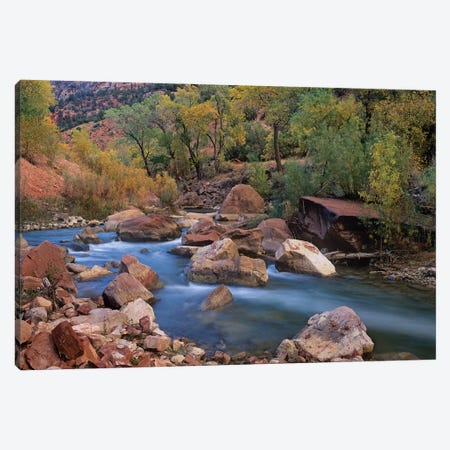 Virgin River Flowing Through Canyon In Autumn, Zion National Park, Utah Canvas Print #TFI1126} by Tim Fitzharris Canvas Art Print