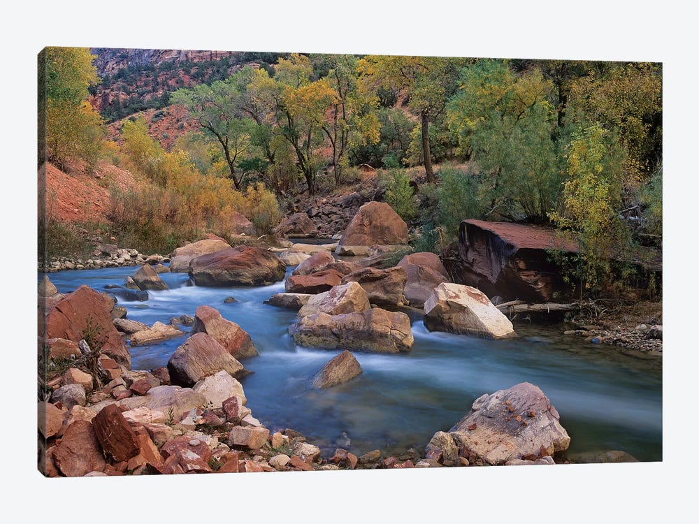 Virgin River Flowing Through Canyon In Autumn, Zion National Park, Utah by Tim Fitzharris 1-piece Canvas Art