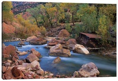 Virgin River Flowing Through Canyon In Autumn, Zion National Park, Utah Canvas Art Print