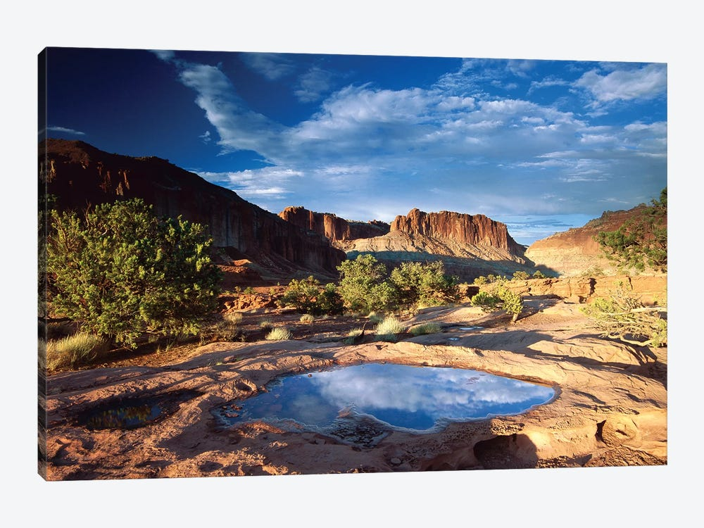 Water Pothole At Panorama Point, Capitol Reef National Park, Utah by Tim Fitzharris 1-piece Canvas Wall Art