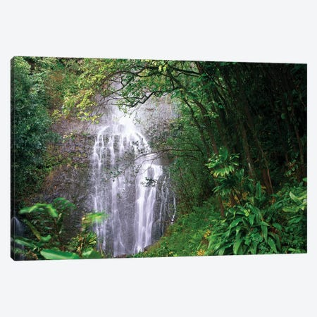 Waterfall Along Hana Coast, Maui, Hawaii Canvas Print #TFI1130} by Tim Fitzharris Canvas Print