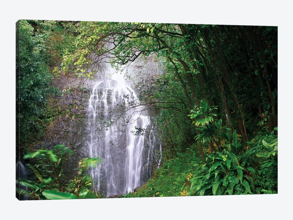 Waterfall Along Hana Coast, Maui, Hawaii by Tim Fitzharris 1-piece Art Print