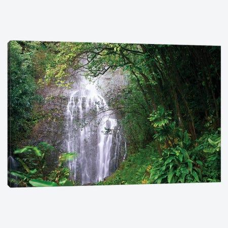 Waterfall Along Hana Coast, Maui, Hawaii Canvas Print #TFI1130} by Tim Fitzharris Canvas Print