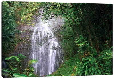 Waterfall Along Hana Coast, Maui, Hawaii Canvas Art Print