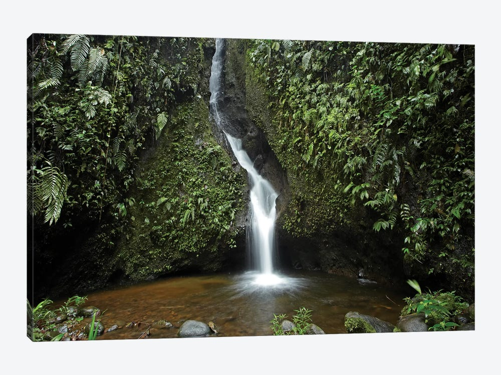 Waterfall In The Milpe Bird Sanctuary, Mindo Cloud Forest, Ecuador by Tim Fitzharris 1-piece Canvas Wall Art