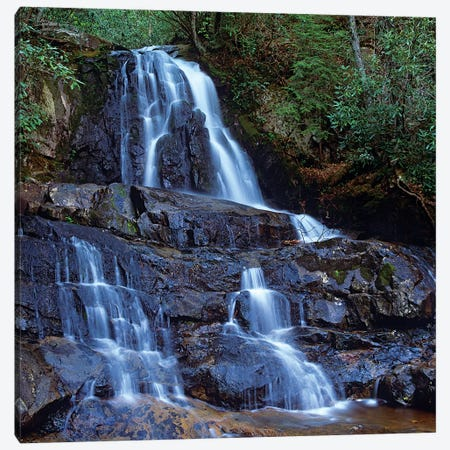 Waterfall, Laurel Creek, Great Smoky Mountains National Park, Tennessee Canvas Print #TFI1132} by Tim Fitzharris Canvas Print